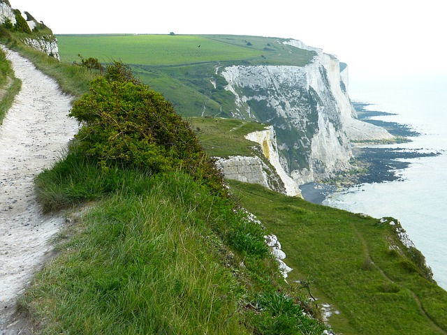 white-cliffs-123473_640